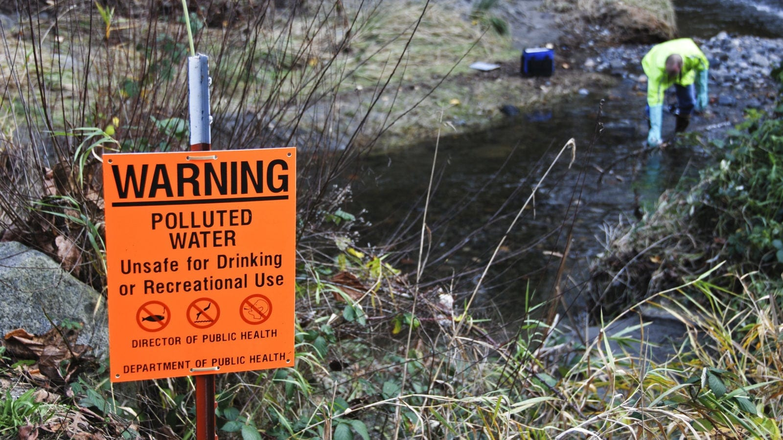 Scientist sampling creek's polluted water