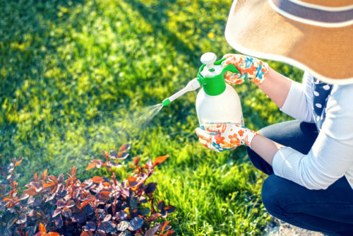 woman using Roundup® for her home garden